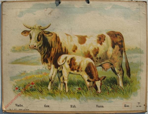 735 - Vache, Cow, Kuh, Vacca, Koe